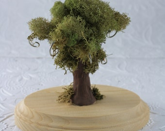 Earring Tree Stand