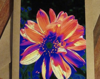 Dahlia Glow.  Photo greeting / note card. Blank inside.