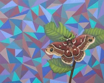 """Original Oil Painting """"Ceanothus"""