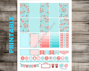 PRITNABLE for Happy Planner Blue and Pink Floral Weekly Planner Sticker Kit for MAMBI Creative 365 Weekly Layout