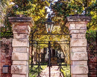 The Sword Gate, The Battery, Downtown Charleston, Wrought Iron Gate, Ivy , Choice of Size