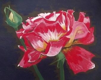 Peace Rose Paintings