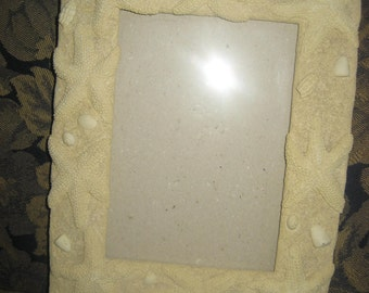 Starfish Photo Picture Frame ( Holds a 5X7 )