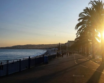 Sunset in French Riviera/France/Palm tree/Sun/Beach/Sea/Promenade/Home/Deco/Sky/Blue/Colors/Street/Coast/Mediterranean