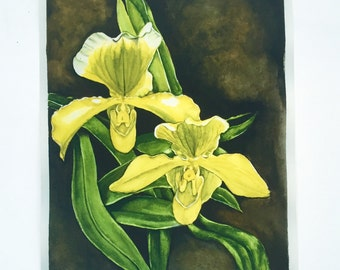 Yellow lady slipper orchid watercolor print