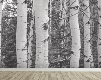 Removable Wall Mural - Birch B+W - Self-Adhesive Repositional Fabric Wallpaper - Full Sizes