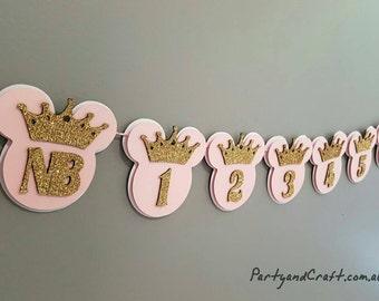 12month minnie photo banner, minnie princess photo garland, monthly photo bunting, photo display, First Birthday