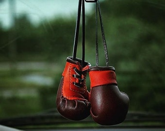 Handmade Boxing gloves in the car