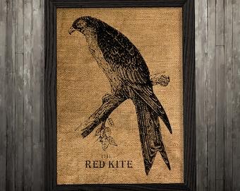 Red kite art Burlap print Animal print Bird poster BLP121
