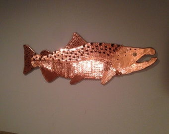 Chinook Salmon Penny Fish - Washougal Tule Buck
