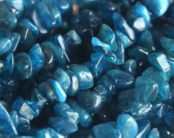 "Natural Genuine Blue Apatite Chip Nugget Free Form 3x8mm 16"" 03818"