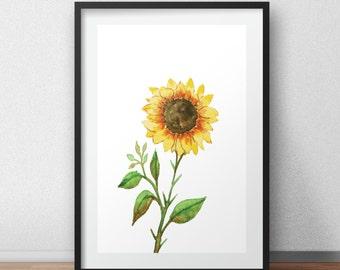 Sunflower Wall Art, Nursery Wall Art, Flowers Print, Flowers Wall Art
