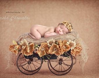 Digital backdrop background newborn baby girl fall