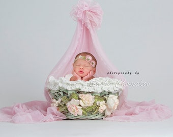 Digital backdrop newborn girl pink green
