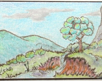 ACEO Color Pencil Drawing - Tree Overlooking A Creek