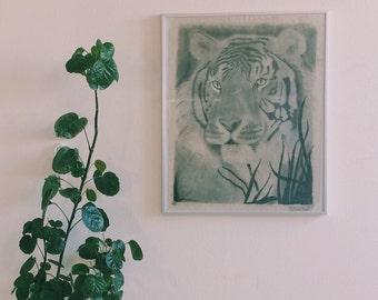 Graphite Tiger