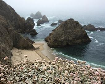 Flowers and Cliffs - ocean photograph - california seascape water travel blue beach pacific