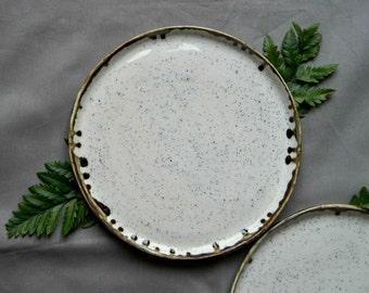 Porcelain plates speckled