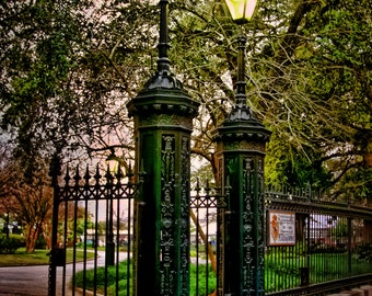 New Orleans Jackson Square Lights with Wrought Iron Fence