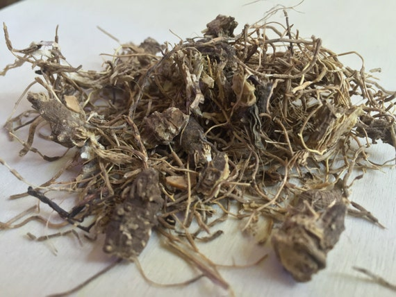 BLUE COHOSH: Uses, Side Effects, Interactions and