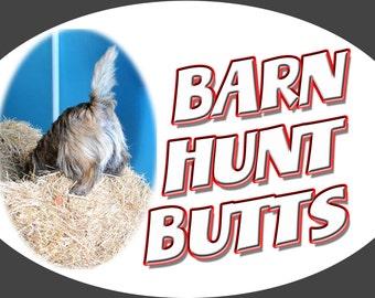 Custom Barn Hunt Magnets