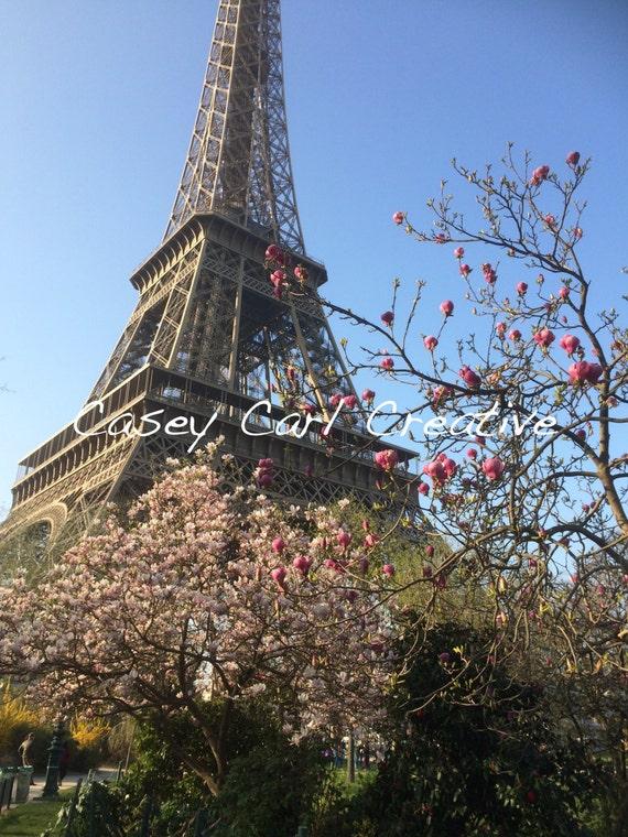Eiffel Tower Nature Photograph