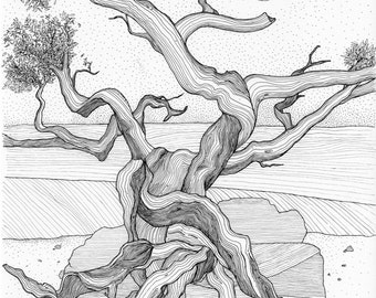 Wall art, tree picture , black and white art, art print, Twisted tree, tree illustration, Wall Art, Gnarled Tree, Orignal, pen and ink, line