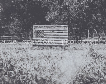 American Flag in Field Mississippi Delta Black and White Fine Art Print Photography