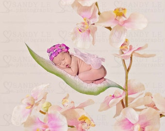 Newborn Digital Backdrop - Pink Orchids Floral with Green Leaf Background Composite
