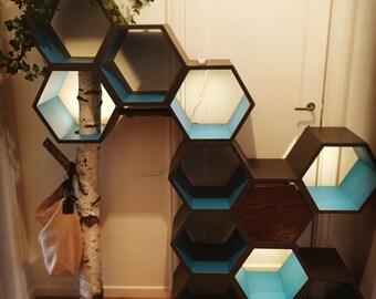 Storage shelves nest bee shelf