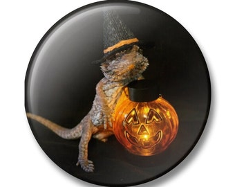 Witchy bearded dragon pin
