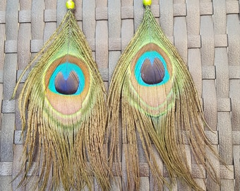 Buckles of ears peacock feathers