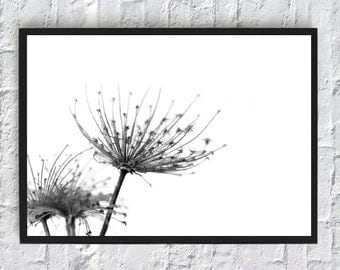Printable flowers, flowers art print, minimalist flowers, black and white, flowers poster, download flowers, wall art, home decor, nature
