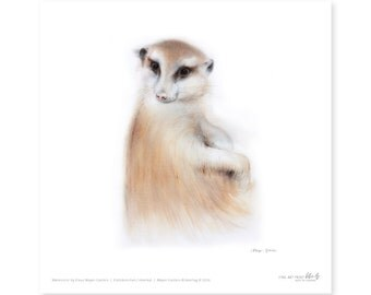 Meerkat fine art print, watercolor, 8,3 x 8,3 inch, limited edition, painted by Klaus Meyer-Gasters