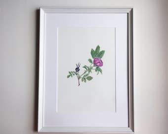 Original Watercolor flower painting Wild rose