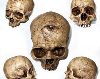 "Skulls on demand ""3rd Eye"""