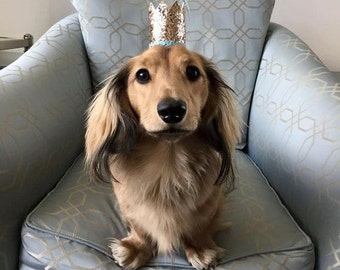 Puppy Party Hat or Crown!!!