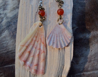 Shell earrings with carnelian