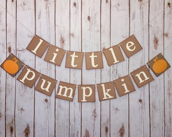 Little pumpkin baby shower, little pumpkin banner, little pumpkin baby shower banner,little pumpkin baby shower decorations,fall baby shower