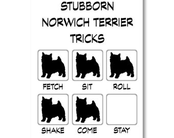 Norwich Terrier Stubborn Tricks Fridge Magnet