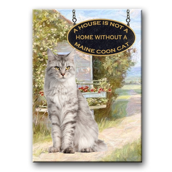 Maine Coon Cat a House is Not a Home Fridge Magnet No 1