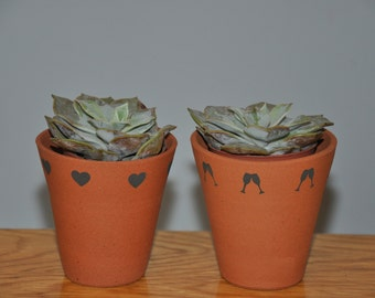 Little Terracotta Flower Pots - Party Favours
