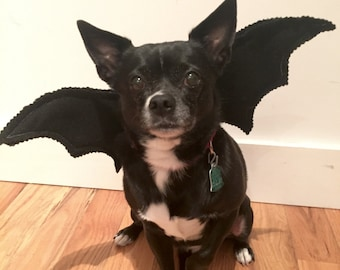 Bat Wings Dog's Bat Costume-- Adorable for Halloween! Handmade, Felt