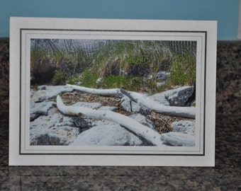 Double Framed Card - Beach Driftwood