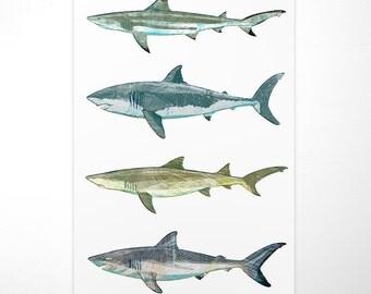 Fishing Gifts- Gift Ideas- Shark Wall Decor- Sharks Poster- Beach Theme Bedroom- Shark Nursery Signs- Shark Print