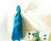 Dog neck tie and cuffs. Custom colors to match your wedding party. dog clothes dog in the wedding  Accessories & Apparel tie and cuff set