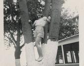 vintage photo 1949 Teenage Girl Shorts Poses in Tree at Cottage Lake Snapshot photo