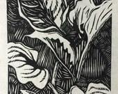 Original botanical wood engraving - Garden Hostas