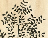 Botanical watercolor, fine art archival print, black tan beige nature wall art  'Locust Silhouette'