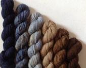 Hand dyed dk merino possum yarn 6 mini skein set  390 yards 6.3 ozs  approx in total